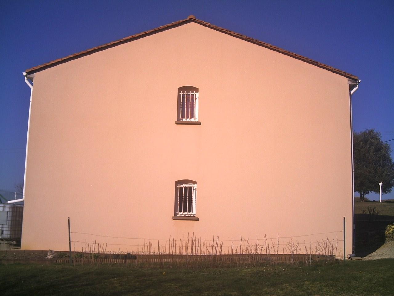 Pic james nettoyage de fa ades et de toitures en charente for Champignon facade maison